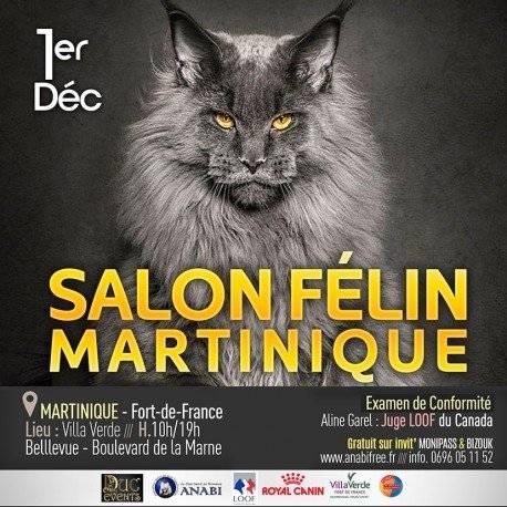 Salon Félin Martinique
