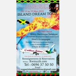 Reggae island DREAM TOUR (Assistez au concert de Buju Banton a Kingston)