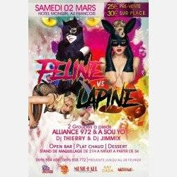 SOIREE FELINE VS LAPINE